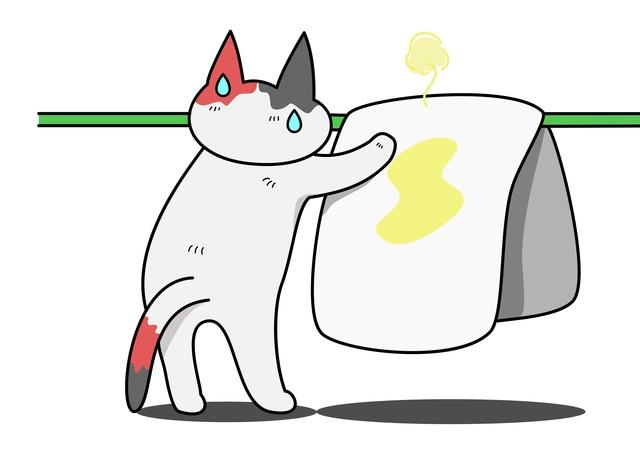 猫 布団 粗相